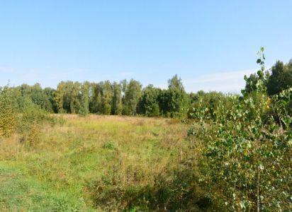 Дача в лесу СНТ Лесной