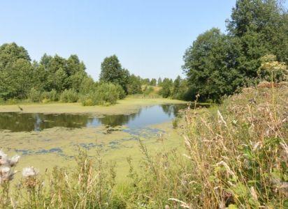 Захарково 20 соток ЛПХ на берегу озера