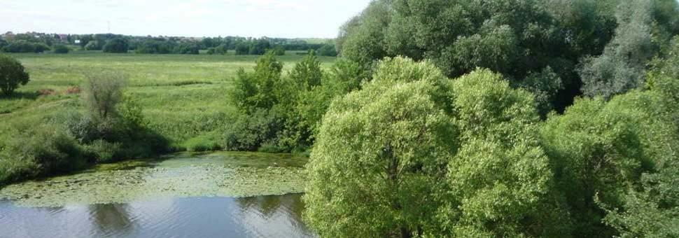 Земельный участок 12 га в деревне МакаровоПодольский район, Симферопольское шоссе, 12 км от МКАД
